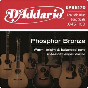 D'Addario Cordes en bronze phosphoreux pour basse acoustique EPBB170, cordes longues, 45-100