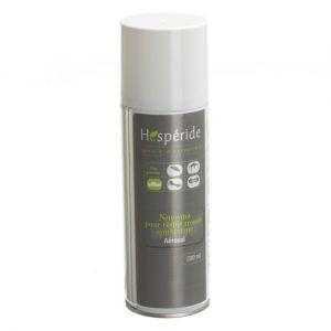 Hesperide Aérosol nettoyant pour résine tressée synthétique - 200 mL - AC-DÉCO