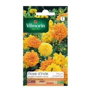 Vilmorin Rose d'inde double grande variée - Sachet graines