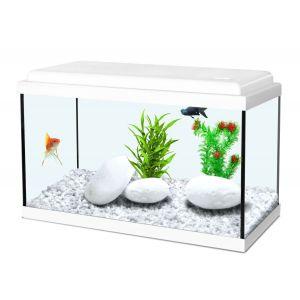 Zolux Nanolife Kidz 40 - Aquarium 18 L