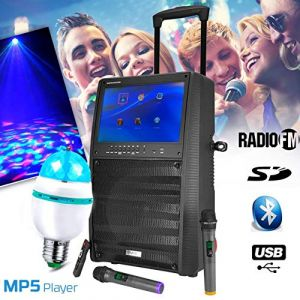 "Ibiza Sound Enceinte KARAOKE Mobile Autonome 12"" 800W - Ecran TFT couleur 15"" - BT + 2 Micros UHF + Tel - PORT-TFT12 + Ampoule DIAMS LED"