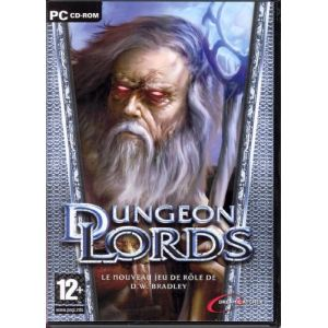 Dungeon Lords [PC]