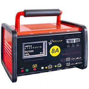 Peraline Chargeur de Batterie d, Atelier Plomb Acide ou Gel 6V ou 12V 8A