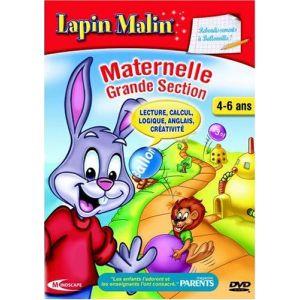 Lapin malin maternelle 3 - Rebondissements à Ballonville ! 2009/2010 [Mac OS, Windows]