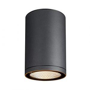 SLV ENOLA, plafonnier extérieur, rond, L, anthracite, LED, 35W, 3000K/4000K, IP65 - Lampes sur pied, murales et de plafond (extérieur)