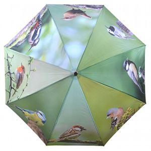 Esschert design Parapluie oiseaux métal et bois