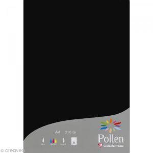 Pollen 24298C - Paquet filmé de 25 feuilles papier 210x297, 210 g/m², coloris noir
