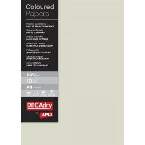 DECAdry 12183 - Etui de 10 feuilles de papier couleur A4, 250 g/m², gris argent