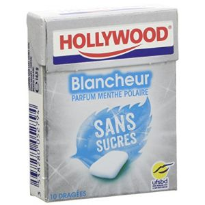 Hollywood Chewing gum menthe polaire