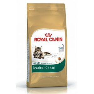 Royal Canin Feline Breed Nutrition Maine Coon 31 Adult - Sac 10 kg