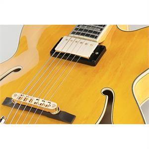 Ibanez PM2-AA - Guitare semi-acoustique