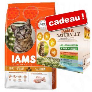IAMS Pro Active Health Adult poisson et poulet pour chat - 10 kg