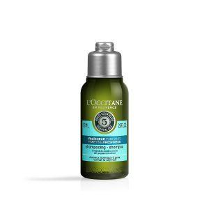 L'Occitane en Provence Shampooing fraîcheur purifiante à l'extrait de menthe poivrée 75 ml