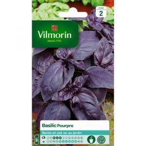 Vilmorin Basilic pourpre - Sachet graines
