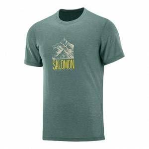 Salomon T-shirts Explore Graphic - Balsam Green - Taille S
