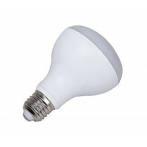 Ampoule LED aluminium R80 E27 - Blanc - 9 W équivalence incandescence 60 W, 700 lm - 3 000 K
