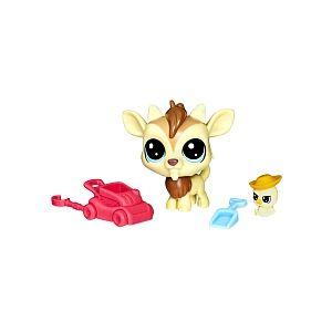 Hasbro Duo Teensiee Petshop Quincy
