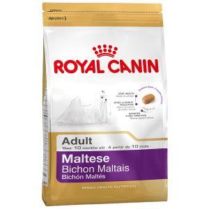 Royal Canin Bichon Maltais Adult - Sac de 500 g (Mini breed)