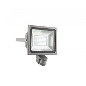 Globo Projecteur LED argent injecté détecteur mouvement, RADIATEUR