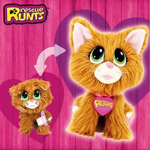 RESCUE RUNTS Le Chat roux à soigner
