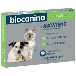 Biocanina Ascatène - Vermifuge polyvalent chiens et chats de plus de 2 kg (10 comprimés)