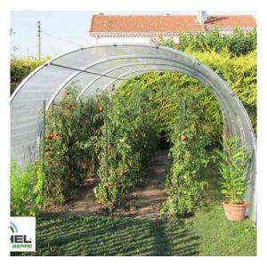 Image de Richel Serre à tomates 24m² - 3 m x 8 m - sans façade