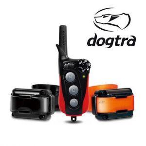 Dogtra Collier de dressage pour chiens : IQ Plus & IQ Plus Duo - portée 400 m