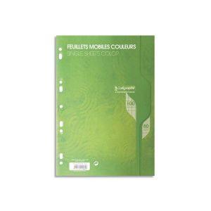 Calligraphe Feuilles mobiles vertes - 100 pages - 21 x 29,7cm - grands carreaux