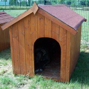 Foresta Niche pour chien en épicéa massif