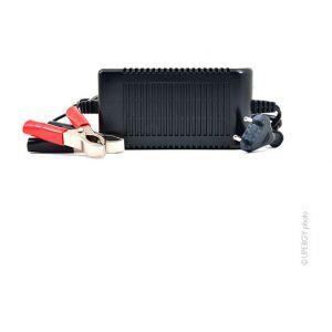 Nx Chargeur plomb 6V/4A 110-230V (Intelligent)