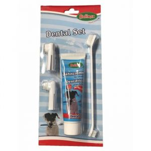 Bubimex Kit dentifrice - Pour chien