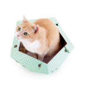 United Pets Abris en carton pour chat Oliver