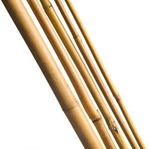 Nature 3 Tuteurs en bambou l - 180 cm/Ø 14-16 mm - CIS