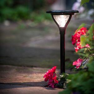 Galix Lanterne Solaire 45 cm Inox