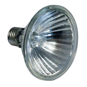 Osram Ampoule Halopar 10° culot E27-75W