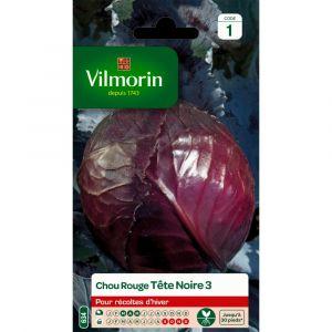 Vilmorin Chou rouge tête noire 2 g