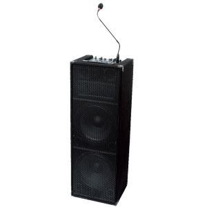 Ibiza Sound Stand Up 212 - Système DJ portable avec USB SD Bluetooth AUX Mic