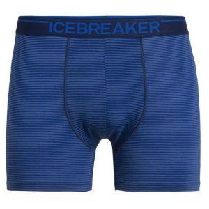 Icebreaker Anatomica Short de Bain Homme, Estate Blue Modèle S 2020 sous-vêtement