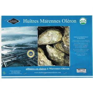 Marennes Oléron Huîtres creuses fines de claire N3x24 minimum