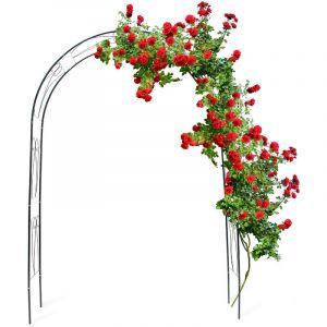 Relaxdays 10018869 Arche à Rosiers tuteur roses arche de jardin arceau rosiers Support Plantes Grimpantes Vert 2,3 m