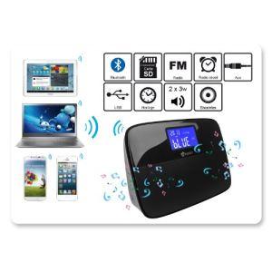 Heden SPKHRV3400 - Enceinte Bluetooth multi-sources