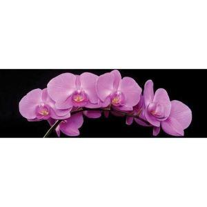 Photo imprimée glass art Orchidée en verre (40 x 120 cm)