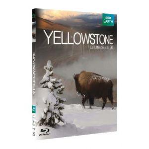 Yellowstone - La Lutte Pour La Vie