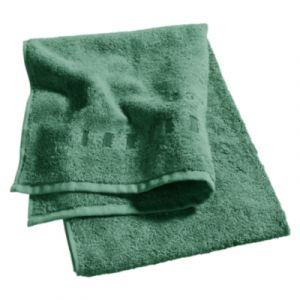 Esprit Lot 4 gants de toilette 16x21 cm uni vert
