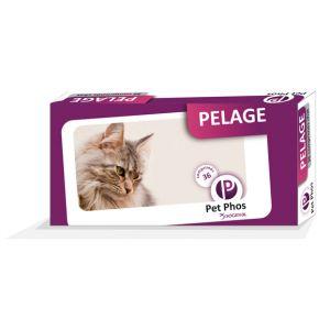 Sogeval Pet-Phos Felin Special Compléments alimentaires pour pelage de chats