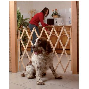 Barrière extensible en bois pour chien