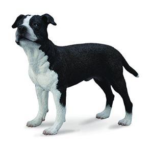 Collecta Figurine American Staffordshire Terrier