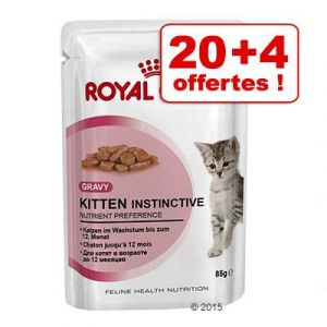 Royal Canin Urinary Care en sauce - 12/24/48/96 x 85 g