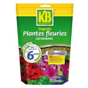 KB Engrais géraniums et plantes fleuries Osmocote - 650 g - Engrais, Fertilisant