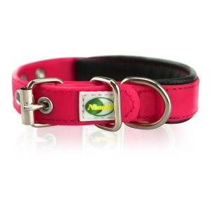 Supersteed Collier pour chien ajustable avec boucle - 225-305 mm, rose